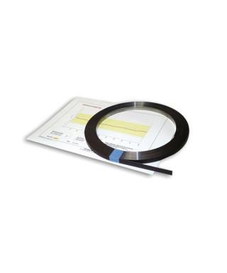 Magnetic Band CSMA